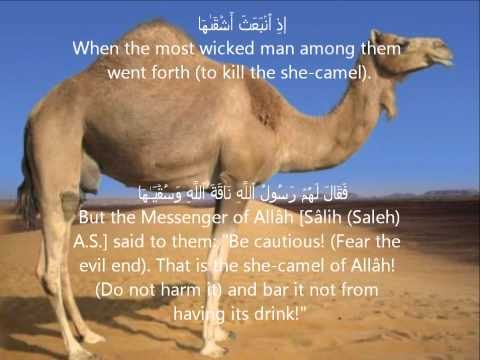 Surah As Shams