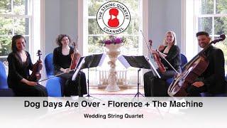 Dog Days Are Over (Florence + The Machine) Wedding String Quartet