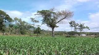 Taxisco-Santa Rosa 3o8