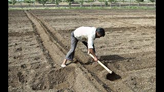 Farmer Land Preparation / soil preparation for farming