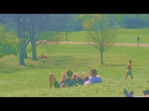 Primrose Hill  (60s video)