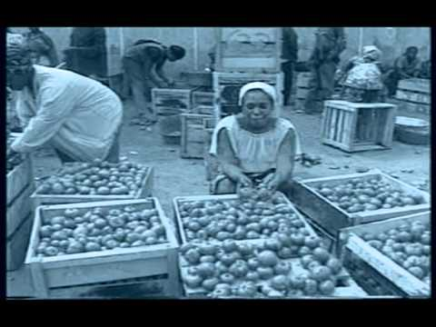 An Economic History Of Ghana (Part #1)