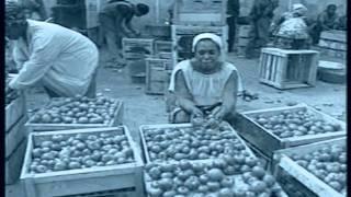 An Economic History Of Ghana (Part #1)
