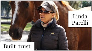 LINDA PARELLI! HOW TO CONNECT WITH YOUR HORSE'S MIND?