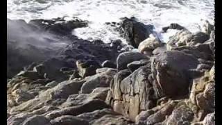 Miz Du - Anniversaire en Novembre à la Pointe du Raz