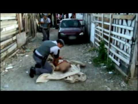 ABERTURA DO PROGRAMA POLICIA 24 HORAS