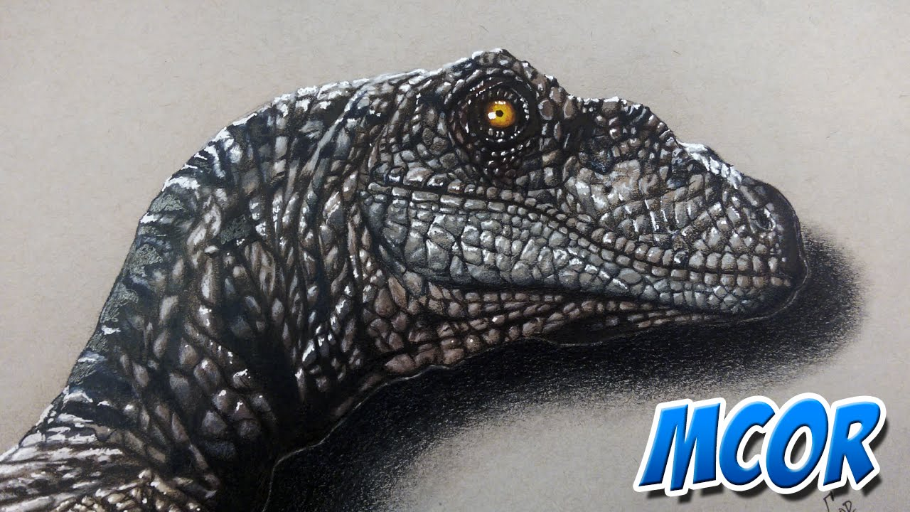 Dibujando un Velociraptor de Jurassic World   Dibujo Realista - YouTube