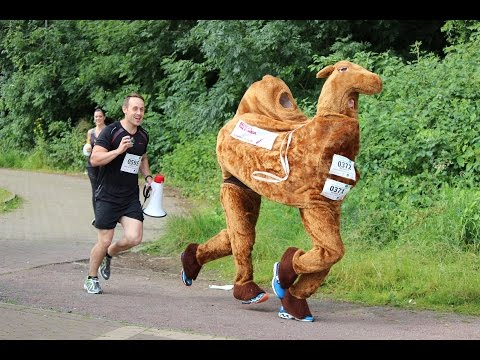 The NSPCC Milton Keynes Half Marathon.... Dressed As A Camel