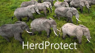 Herd Protect Review and Demo