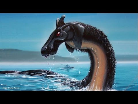 Sea Monsters: Fact or Fiction?