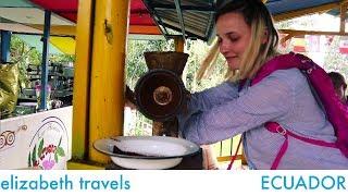 Coffee farm in Salento, Colombia   South America