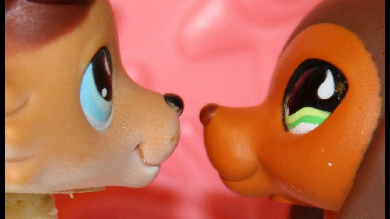 Download Littlest Pet Shop: Popular (Episode #6: Moments of Reflection)