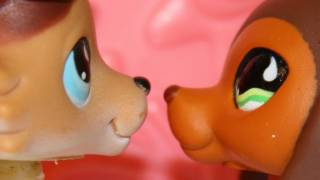 Littlest Pet Shop: Popular (Episode #6: Moments of Reflection) [Sous-titres français]