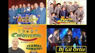 los angeles azules, rayito colombiano, cañaveral mix - dj gil ortiz cumbias vallenata vallenato