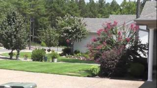 Hot Springs Village Arkansas Real Estate Maderas Gardens Patio Homes For Sale.m4v
