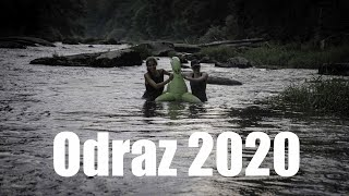 AVA - Odraz 2020