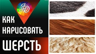 МАСТЕР-КЛАСС. Как нарисовать шерсть или мех цветными карандашами