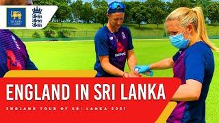 England in Sri Lanka | Preparations