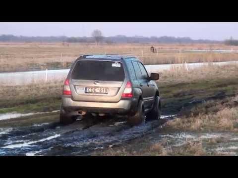Subaru and Rusnė 2014