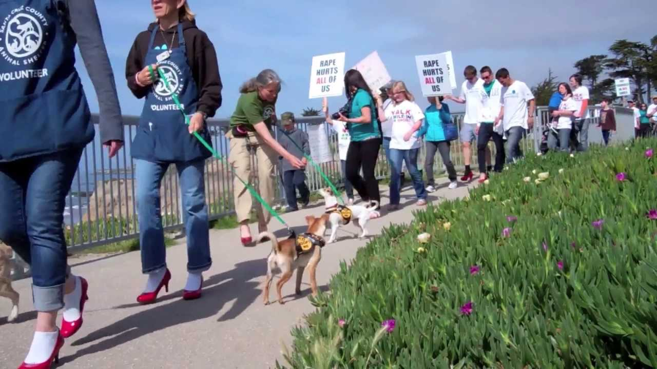 Team Paws Pumps Santa Cruz Animal Shelter Youtube
