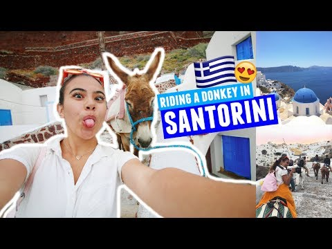 RIDING A DONKEY IN SANTORINI | Greece Traveling Day 7!