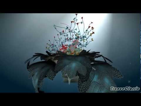 Cold Turkey ~ Sunflower (Transa Remix) (Motion Video) [HD]