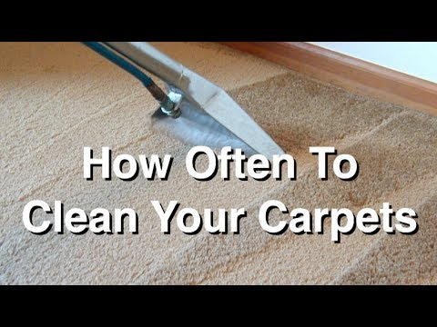 How Often To Clean Your Carpets And Why You