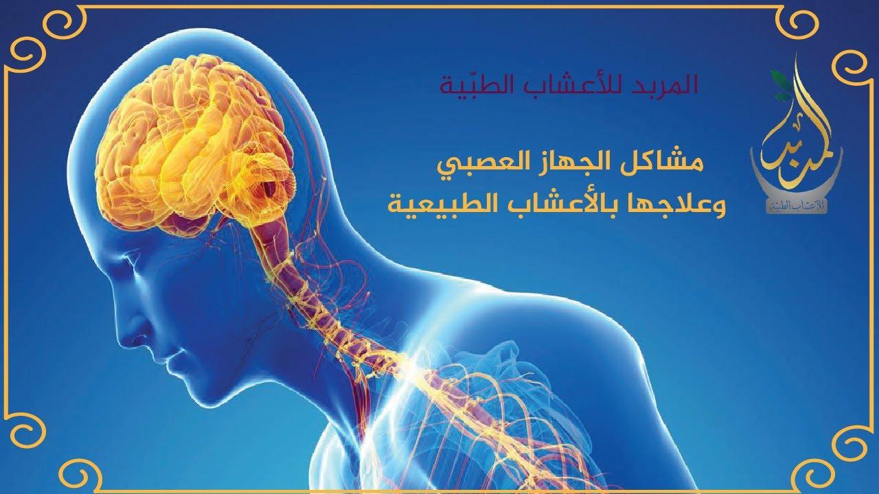 الإيمان تعبر نيزك علاج كهرباء المخ الزائدة بالاعشاب Virelaine Org