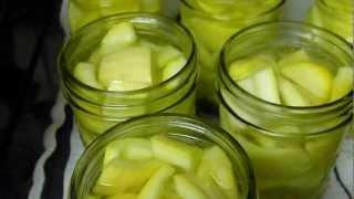 Canning Yellow Squash