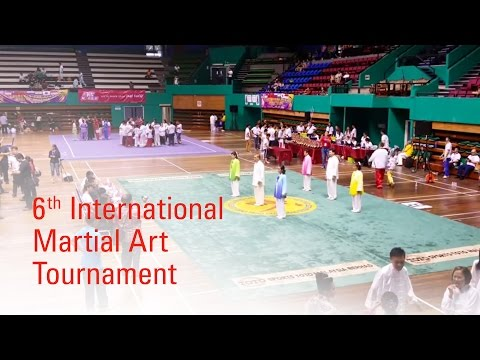 6th International Martial Art Tournament 2015 : Group Tai Chi Champion