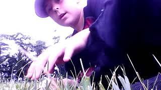 My first baseball video