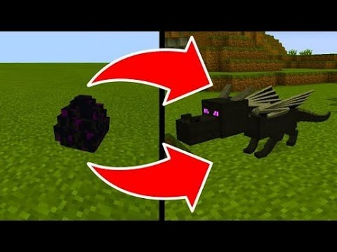 how to hatch the ender dragon egg in minecraft pocket