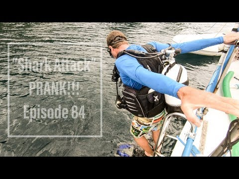 Shark Attack PRANK + life aboard in the Banda Sea Episode 84 (Sailing Catalpa)