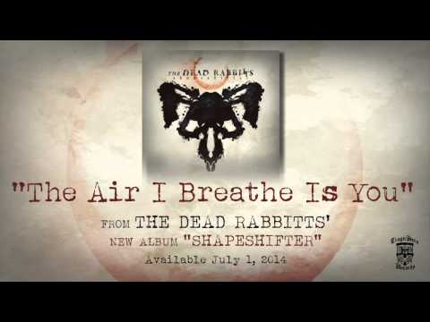 THE DEAD RABBITTS - The Air I Breathe Is You (Official Stream)