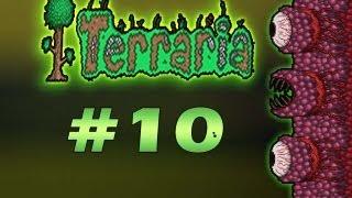 Repeat youtube video Terraria 1.1.2 parte 10 [español] - la batalla contra la muralla de carne