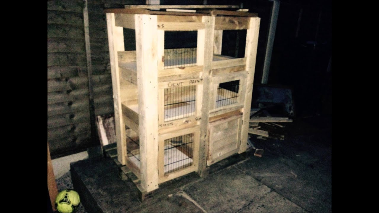 building rabbit hutch from scratch youtube
