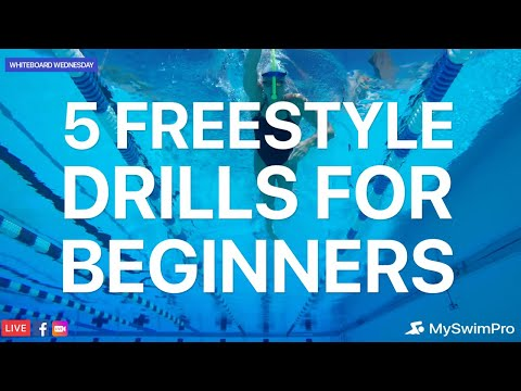 5 Freestyle Drills For Beginner Swimmers | Whiteboard Wednesday