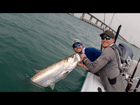 TARPON Fishing At FLORIDA KEYS Bridges