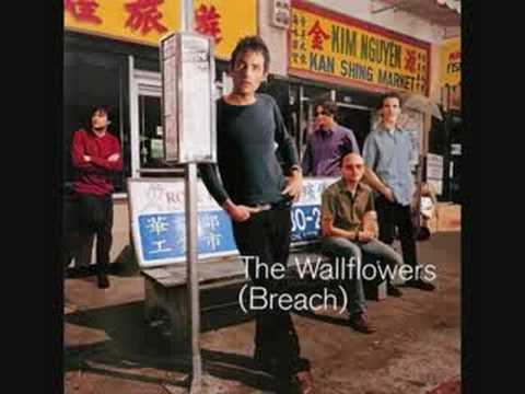 the wallflowers i ve been delivered