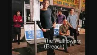 Watch Wallflowers Ive Been Delivered video