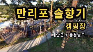 [태안군]_ 만리포 캠핑장 / 예약_ 솔향기 캠핑장 홈…