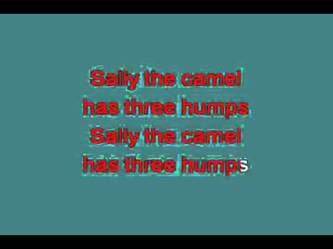 SALLY THE CAMEL 713473 [karaoke]