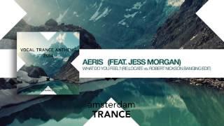 Aeris feat. Jess Morgan - What do you feel (Re:Locate vs Robert Nickson Banging Remix Radio Edit)
