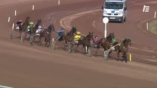 Vidéo de la course PMU PRIX SIENNE