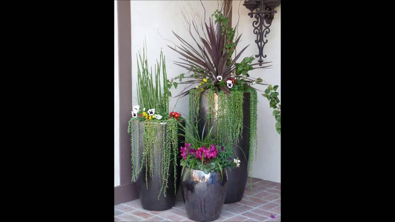 corner living room plants - youtube