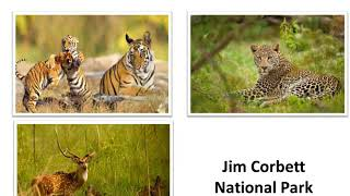 Animal Conservation - National Park, Biosphere Reserve and Animal sanctuary in India -English