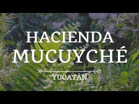 Hacienda MUCUYCHÉ  y sus increíbles Cenotes | Mérida, Yucatán