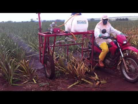 Motoagro / Passando herbicida / 1 hectare por hora
