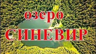 ПИЛИПЕЦ! Поездка на озеро  СИНЕВИР