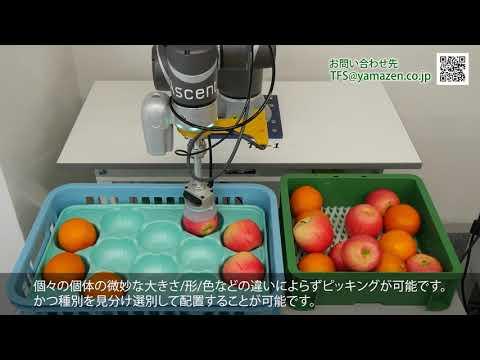 AIソフトウェア アセントピック 《アセントロボティクス》  FOOMA JAPAN 2021出展の食品業界向けロボットピッキング紹介